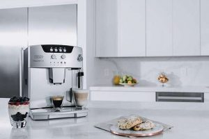 DeLonghi ESAM 04110s Review